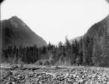 View of Mount Rainier looking southeast from upper bend in Carbon River, July 18, 1897