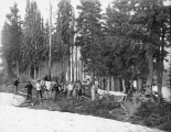 Camp scene at Theosophy Ridge, Paradise Park, July 25, 1896