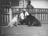 Dog and chained bear cub at the Tacoma Hotel, Tacoma, September 27, 1892