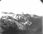 View of Mount Rainier, looking southeast from Eagle Cliff, July 19, 1897