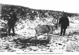 Group of people with reindeer and sled, location unknown, ca. 1899
