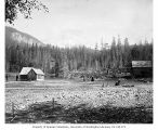 Longmire Springs, with Mt. Rainier in the background, August 12, 1888