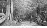 Loggers with crosscut saw and felling axes on skidroad, probably near Seattle, 1887