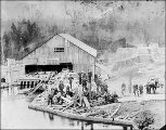 Bay View lumber mill, south Whidbey Island, Washington, 1912