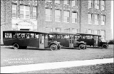Buses in front of the public school in Enumclaw, Washington, ca. 1915