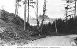 Dirt road with view of the Pacific Ocean, La Push, n.d.