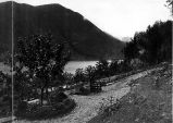 Panoramic view of the grounds and waterfront of the Qui Si Sana Sanatorium and Biological...