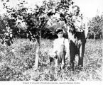 Unidentified man and boy standing in the orchard of the Warren family farm, Bellevue, Washington,...