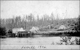 Lowell on the Snohomish River, Washington, 1886
