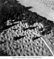 Aerial view of mounds and fir tree shadows at west edge of Mima Prairie,  July 29, 1966