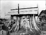 Cedar stump house, Edgecomb, Washington, ca. 1901