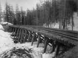Mostly finished Northern Pacific Railway trestle during winter, Washington, ca. 1887