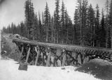 Northern Pacific Railway trestle in winter, Washington, ca. 1887