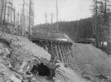 Northern Pacific Railway trestle and cars, Washington, ca. 1887
