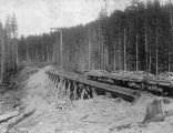 Northern Pacific Railway flatcars carrying ore on trestle, Washington, ca. 1887