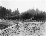 Bathing area on the Hood Canal, Washington, ca. 1934
