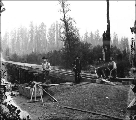 Bridge construction crew, Grays Harbor County, Washington, ca. 1905