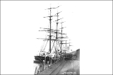 Sailing vessel unloading tea on Tacoma dock, Washington, ca. 1890