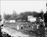 Unidentified farm in the vicinity of Hoquiam,  Washington, ca. 1903.