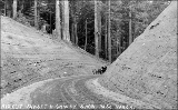 Automobile on Sunset Highway, Snoqualmie Pass, Washington, ca. 1917