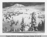 Paradise Park in winter viewed from Mazama Ridge, n.d.