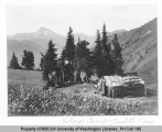 Sheepherder's shelter in a meadow near trails to Sauk River and Red Pass with Sloan Peak in the...