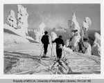 Two skiers in a grove of snow-covered trees viewing Table Mountain, n.d.