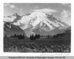 Sunrise Park, Mount Rainier National Park, n.d., officially known as Yakima Park.