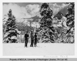 Three skiers in Paradise Valley with Tatoosh Range and Pinnacle Peak in background, n.d.