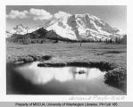 Grand Park, Mount Rainier National Park, n.d.