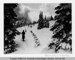 Skier in Paradise Valley, southeast slope of Mt. Rainier, n.d.