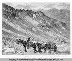 Horse packtrain at Red Pass west of White Mountain on Crest Trail showing Whitechuck Glacier in...