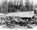 Pack train being loaded for trip to headworks site, June 5, 1903