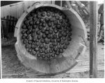 Inside view of a section of wooden stave pipe during testing, March 8, 1900