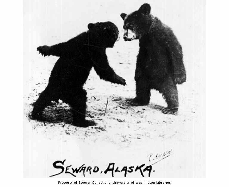 Seward Alaska dating