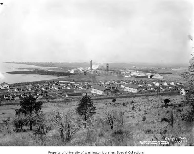 Bird's-eye view of mill and town, Lamm Lumber Company