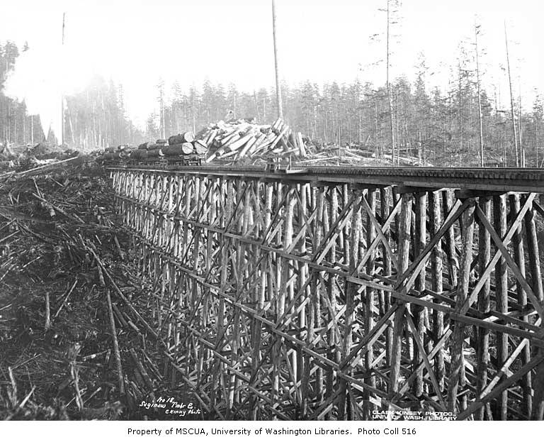 High Wooden Railroad Trestle With Log Train Saginaw Timber Company