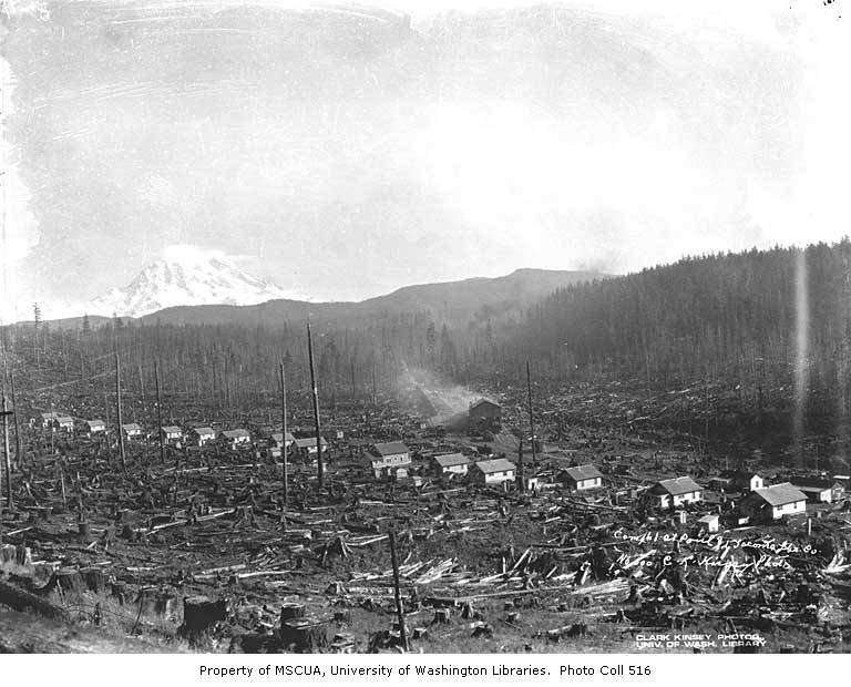 St Paul And Tacoma Lumber Company S Camp No 1 With Mt Rainier In Background 1922