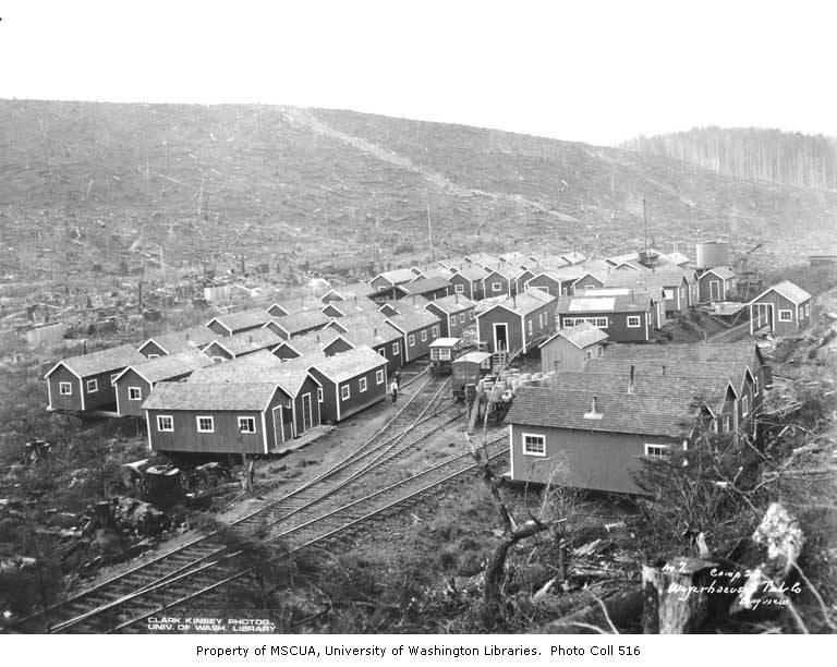 Railroad logging camp no  2, Weyerhaeuser Timber Company