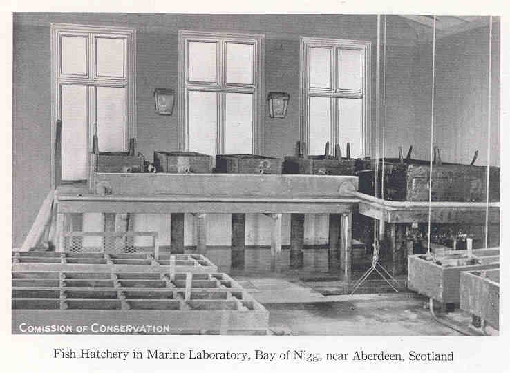 Fish Hatchery in Marine Laboratory, Bay of Nigg, near